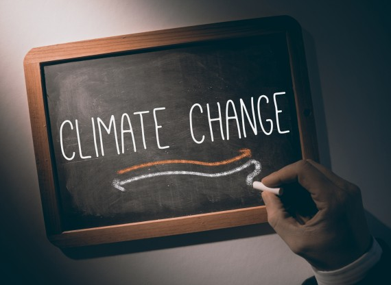 Have American Schoolteachers Subconsciously Absorbed Climate-Denying Dogma?